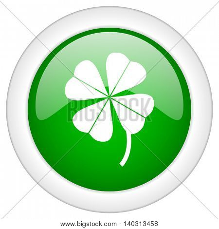 Green glossy web four-leaf clover vector icon isolated on white bacground