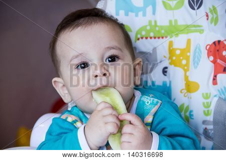 baby eating vegetables. in a high chair. A teething baby eating the cucumber the concept of baby food feeding baby. Newborn home. healthy food.