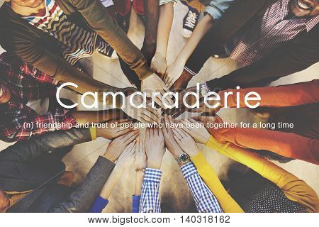 Camaraderie Carefree Chill Friends Togetherness Concept