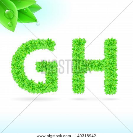 Sans serif font with green leaf decoration on white background. G and H letters