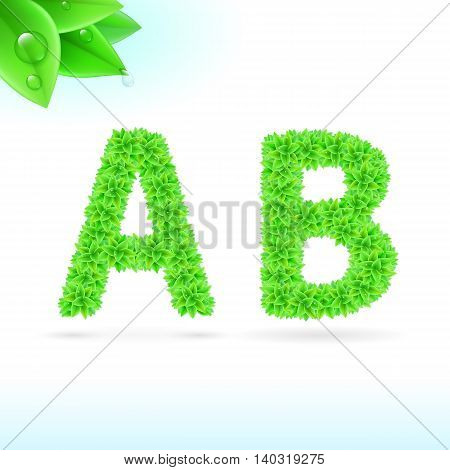 Sans serif font with green leaf decoration on white background. A and B letters