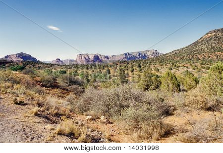 Arizona desert near Sedona on a sunny summer day with blue sky