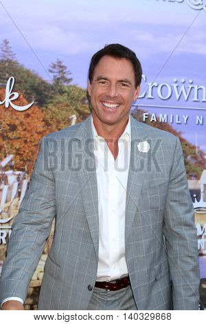 LOS ANGELES - JUL 27:  Mark Steines at the Hallmark Summer 2016 TCA Press Tour Event at the Private Estate on July 27, 2016 in Beverly Hills, CA