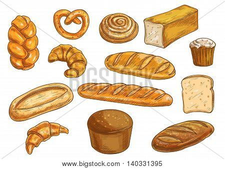 Bread sorts and bakery elements set. Vector pencil sketch of rye bread, ciabatta, wheat bread, muffin, bun, bagel, sliced bread, french baguette, croissant, pretzel