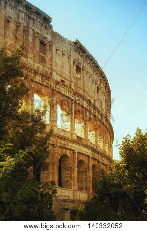 Side angle of the colosseum of Roma
