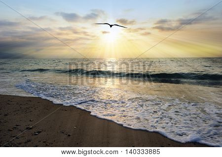 Spiritual image is an ethereal ocean scenic with sun beams bursting forth from the setting sun as a single soul moves toward the light and an ocean wave gently comes to shore.