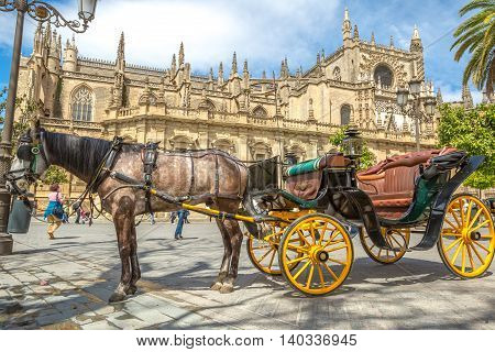 Seville, Andalusia, Spain - April 18, 2016: typical old carriage drawn by a white horse stopped in front of Cathedral of Seville.
