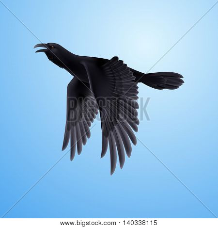 Flying black raven on blue sky background, vector