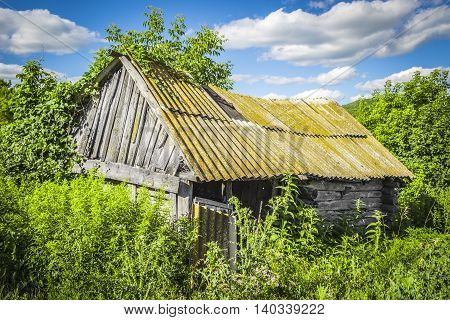 Old abandoned wooden hut overgrown grass on a bright sunny summer day