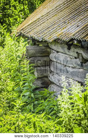 Part of the abandoned old wooden hut overgrown with grass.