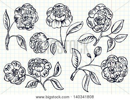 Doodle vector line simplicity rose vector set