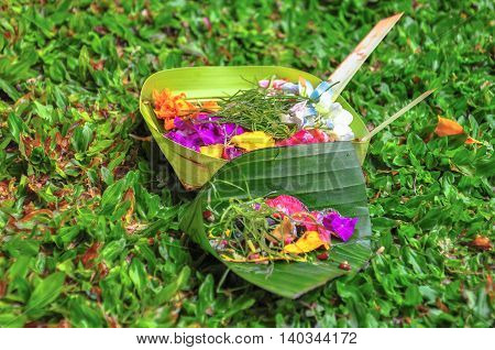 Canang Sari is one of Daily Balinese hindus people offerings made to thank the gods in praise and pray.