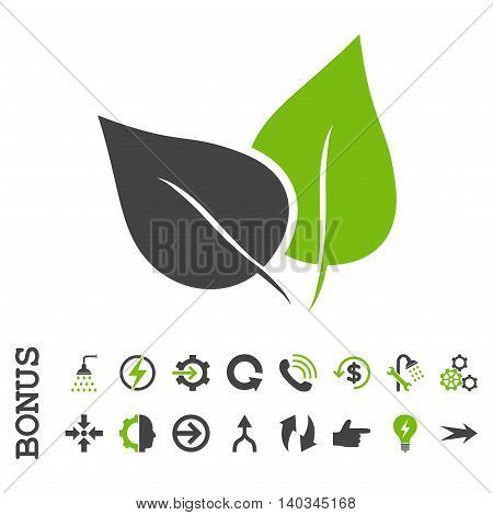 Flora Plant vector bicolor icon. Image style is a flat pictogram symbol, eco green and gray colors, white background.
