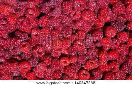 close-up horisontal red rasberry texture in sunlight