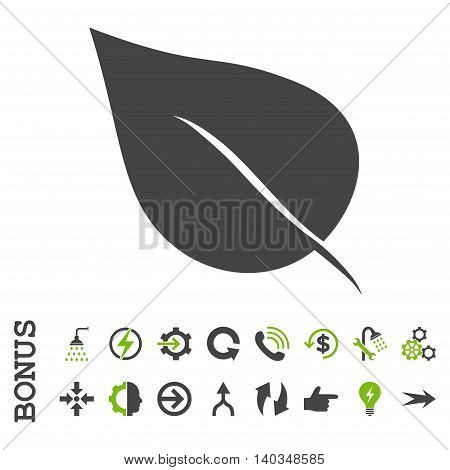 Plant Leaf vector bicolor icon. Image style is a flat iconic symbol, eco green and gray colors, white background.