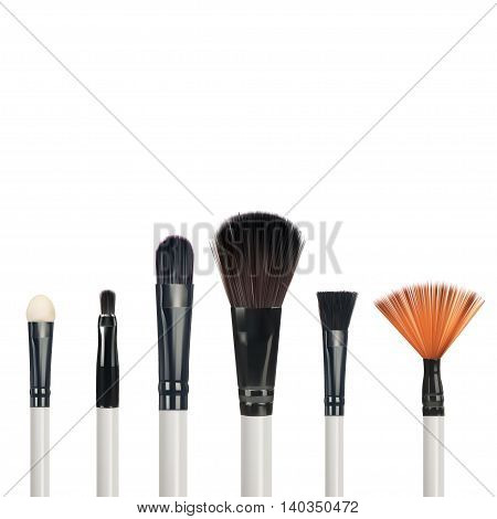 Set of makeup brushes isolated on white background vector