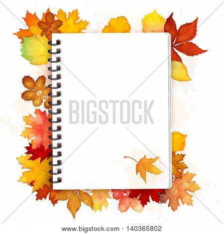 Open spiral notebook with autumn leaves vector background