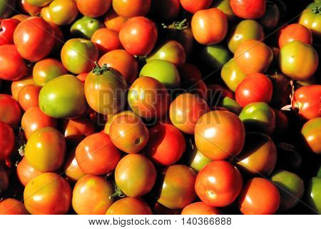 photo of very fresh tomatoes, Tomato-Pile Of Tomato / Stack Of Tomato.