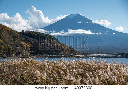 Beautiful view of Mount Fuji and field at Lake Kawaguchi in autumn This mountain is a famous natural landmark and symbolic of Japan