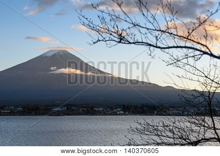 Beautiful view of Mount Fuji through branches of trees at Lake Kawaguchi in autumn This mountain is a famous natural landmark of Japan