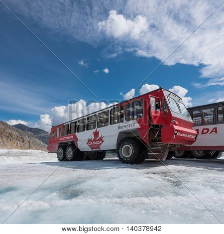 Jasper Canda. June 28th 2016. Ice explorer buses take tourists out to view the Athabasca Glacier and Columbia Icefield