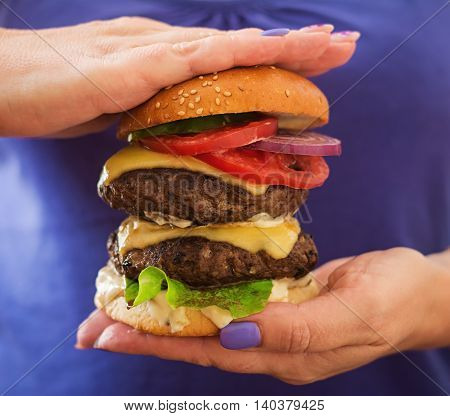 Big Sandwich - Hamburger Burger With Beef, Cheese, Tomato And Tartar Sauce In Female Hands