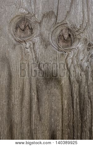 Knots and cracks in a panel of wood seem to resemble the eyes of an owl