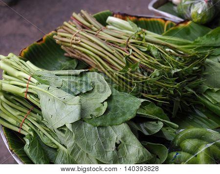 bundle of fresh green chinese kale in marketplace