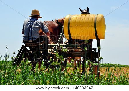 Lancaster County Pennsylvania - June 8 2015: Amish youth seated on a plow with large plastic drum at work irrigating a field pulled by a team of two horses *
