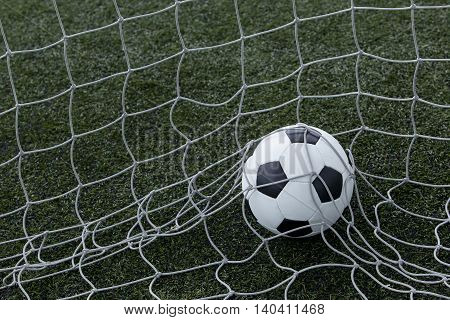 the soccer ball in a net of gate