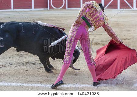 Sabiote SPAIN August 26 2011: The Spanish Bullfighter Miguel Tendero bullfighting with the crutch in the Bullring of Sabiote Spain