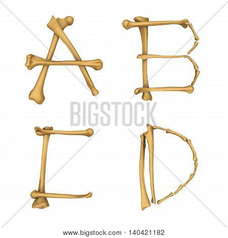 3D illustration of Skeleton alphabet A-D isolated on white background