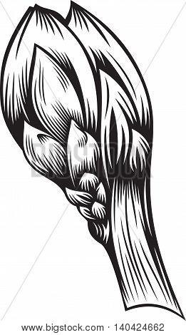 Stylized illustration of bud. Black and white style