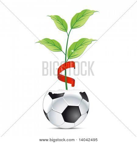 creative football sign