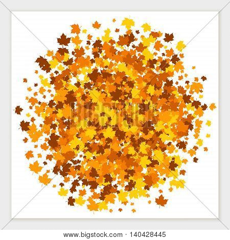 Autumn colors vector banner of scattered maple leaves.