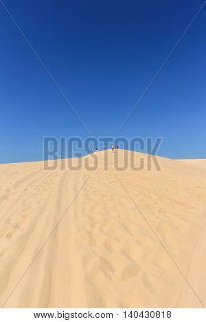 People In Desert - White Sand Dune In Mui Ne , Vietnam