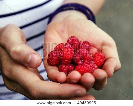 Teenage Girl Eating Raspberry In The Garden