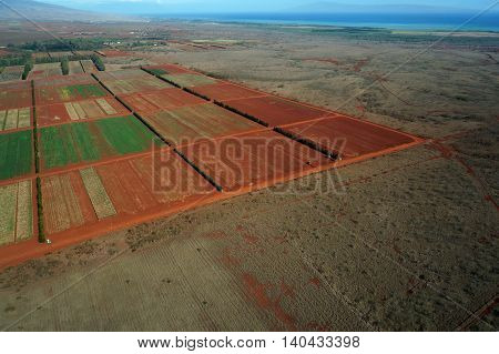 Aerial of Farm fields of different stages of age running to the ocean on Molokai Hawaii. April 2016.