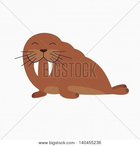 cartoon funny walrus on a white background