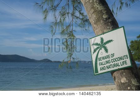 Beware of falling coconuts and natural life sign on Banana Beach, Koh He, Thailand