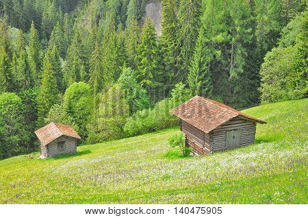 Swiss countryside on the mountain landscape background.