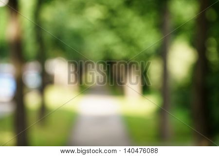 town alley with green trees background, high resolution