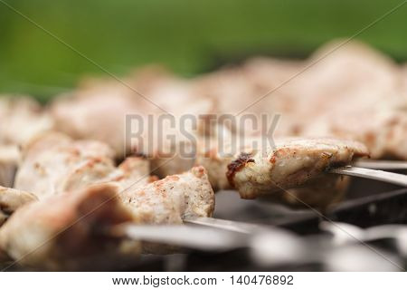 preparing shashlik on a picnic outdoors, shallow depth of field