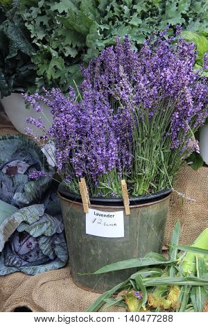 Lavender flowers for sale at a Farmer's Market