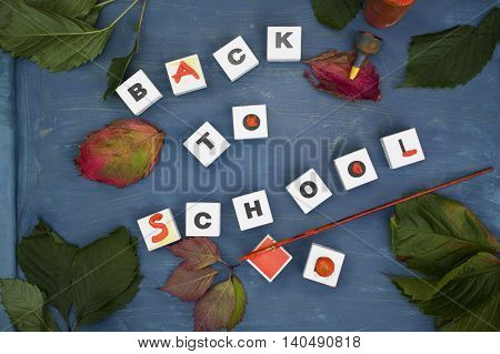 Leaves and playing cubes with text Back To School laid on the blue pupil desk. Overhead outdoor shot
