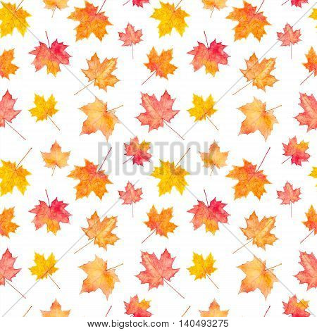 Seamless pattern of autumn maple leaves. Watercolor painting.