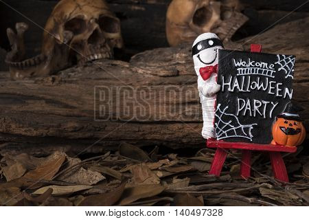 Mummy and jack-o-lantern standing on welcome halloween party board with human skull and dry leaf in forest