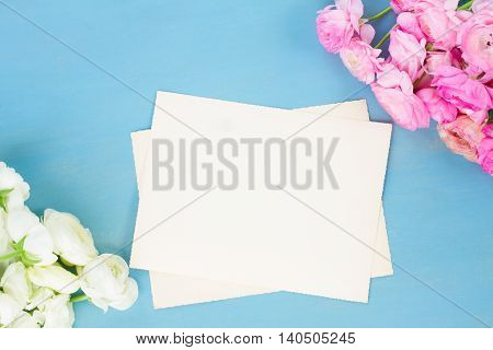 Pink and white ranunculus flowers on blue wooden background with copy space on blank paper notes