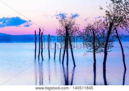 Beautiful landscape with a lake and mountains in the background and trees in the water. Blue and purple color tone. Slovakia, Central Europe, region Liptov