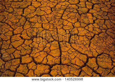 Cracks in the dried soil in arid season.